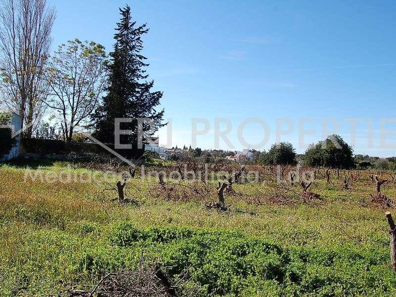 Terreno para comprar, Vila Nova de Cacela, Faro - Foto 14