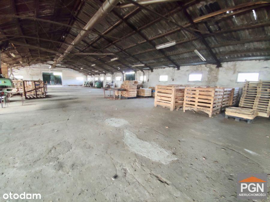 Duża Działka z zabudową przemysłową w Wysokiej Kam