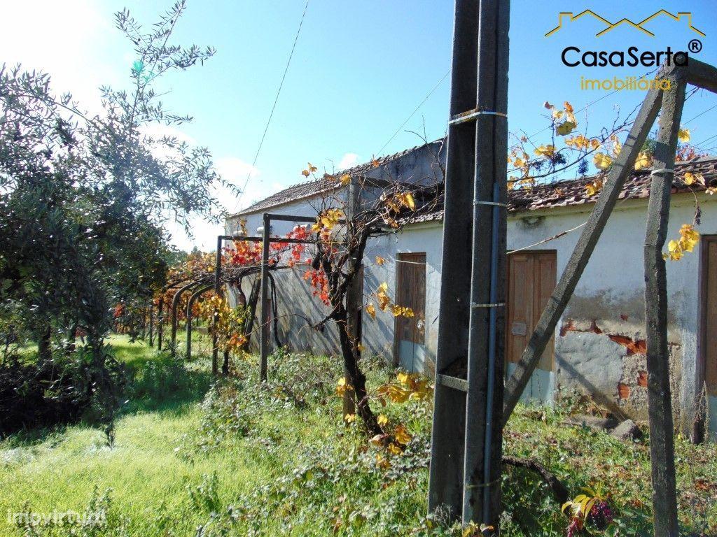 Terreno para comprar, Sertã, Castelo Branco - Foto 23