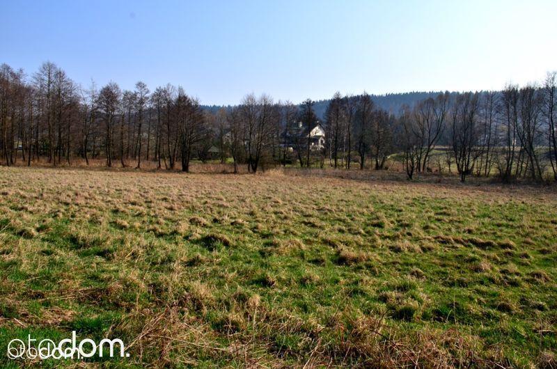 Działka budowlana w okolicy Polanicy Zdrój