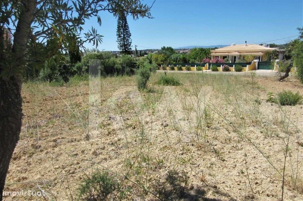 Terreno para comprar, Alcantarilha e Pêra, Silves, Faro - Foto 10