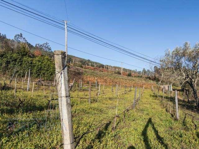 Quintas e herdades para comprar, Teixeira e Teixeiró, Porto - Foto 7