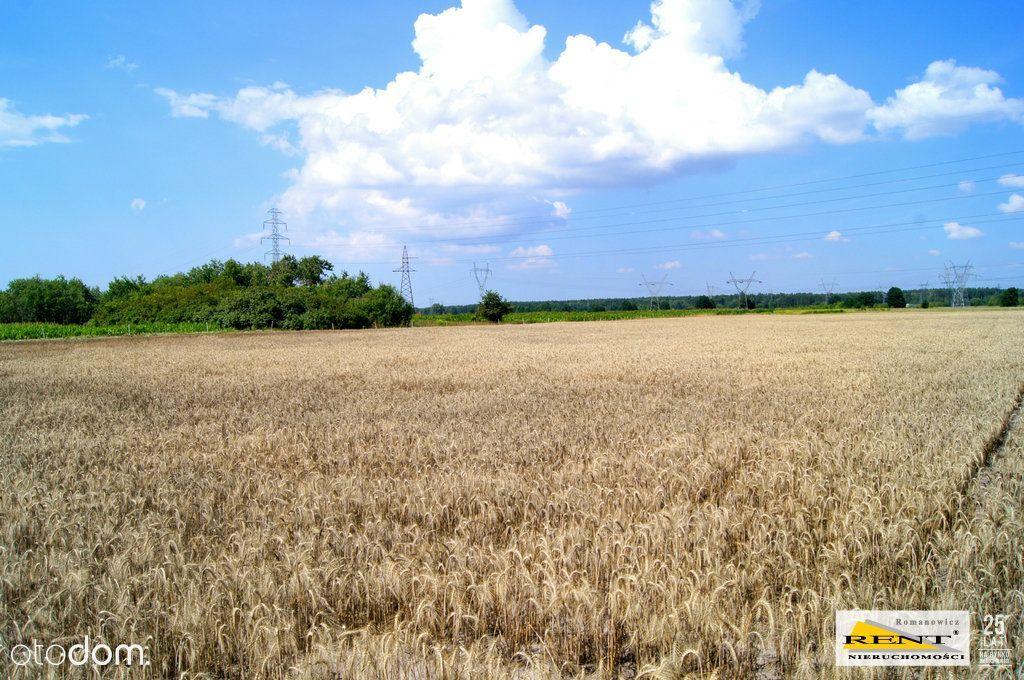 Duża działka rolna w Kobylance przy ulicy Szczeciń