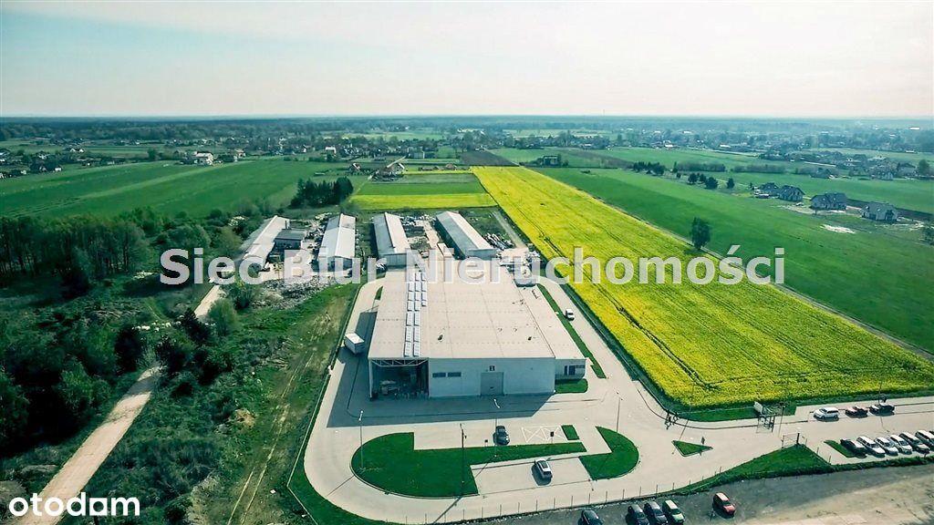 Hala/Magazyn, 2 591,50 m², Pszczyna