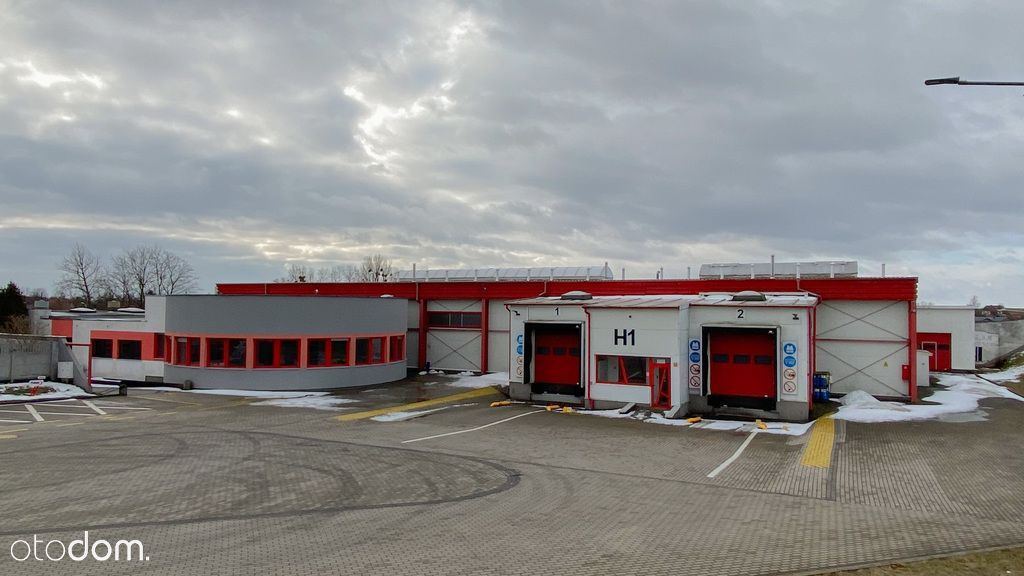 Hala/Magazyn, 8 524 m², Sztum