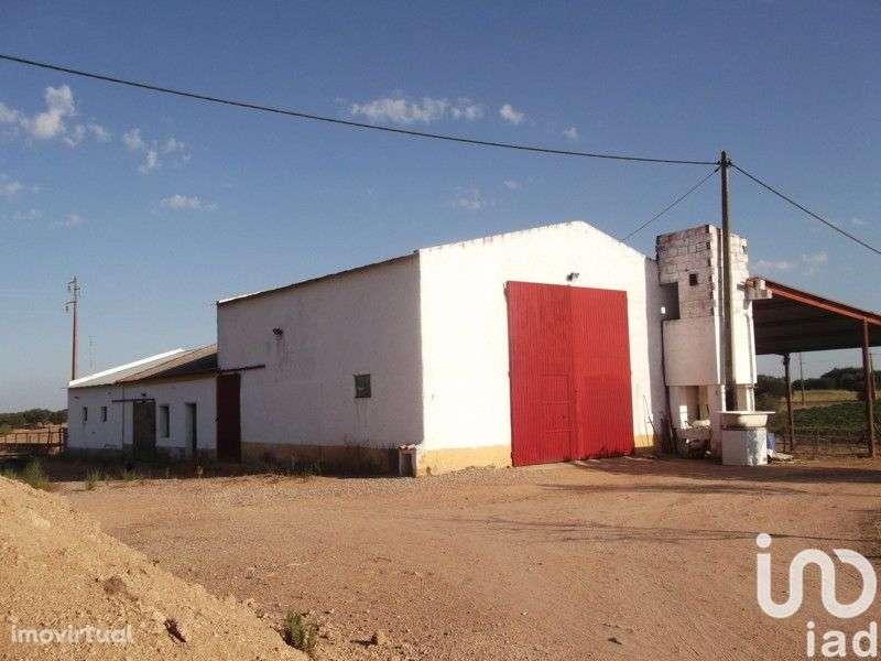Terreno para comprar, Fronteira - Foto 6