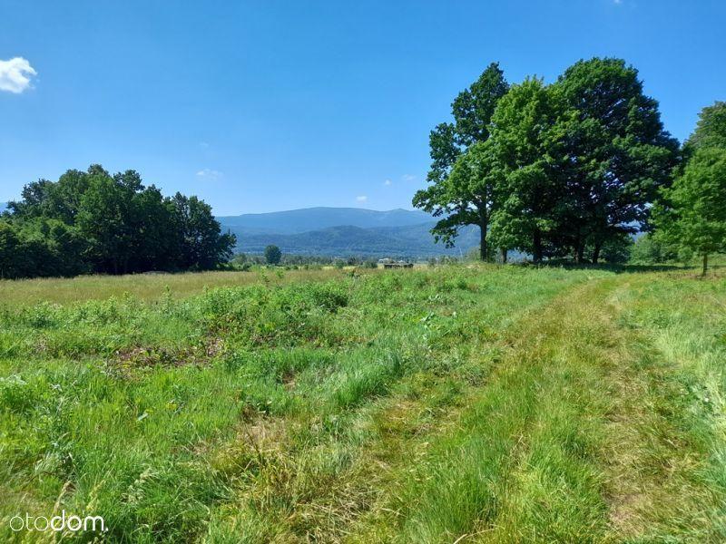 Działka z widokiem na góry i lasem.