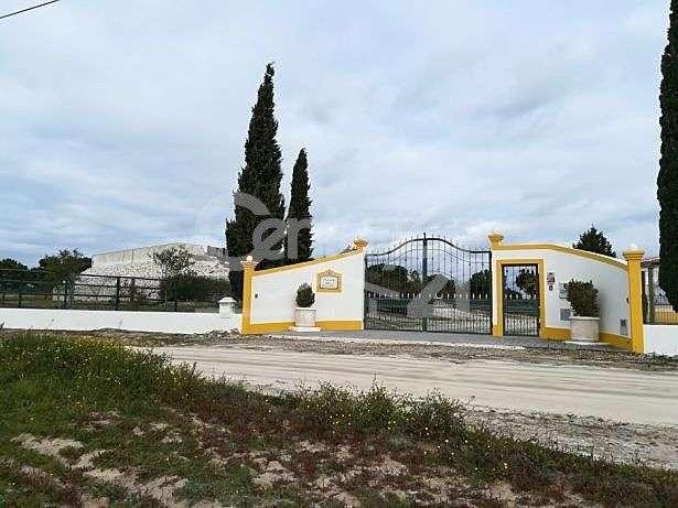 Quintas e herdades para comprar, Branca, Santarém - Foto 2