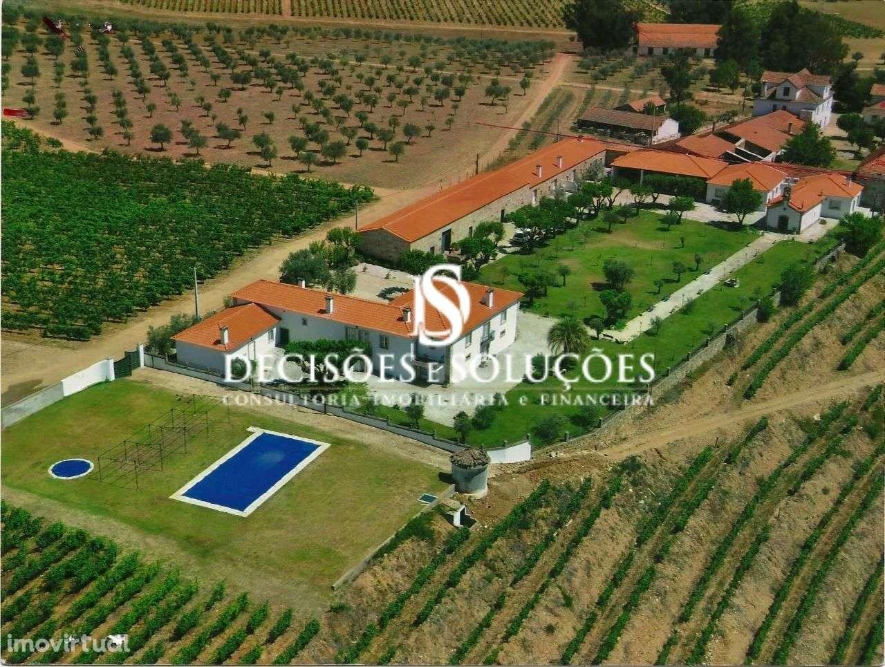 Quintas e herdades para comprar, Provesende, Gouvães do Douro e São Cristóvão do Douro, Vila Real - Foto 1