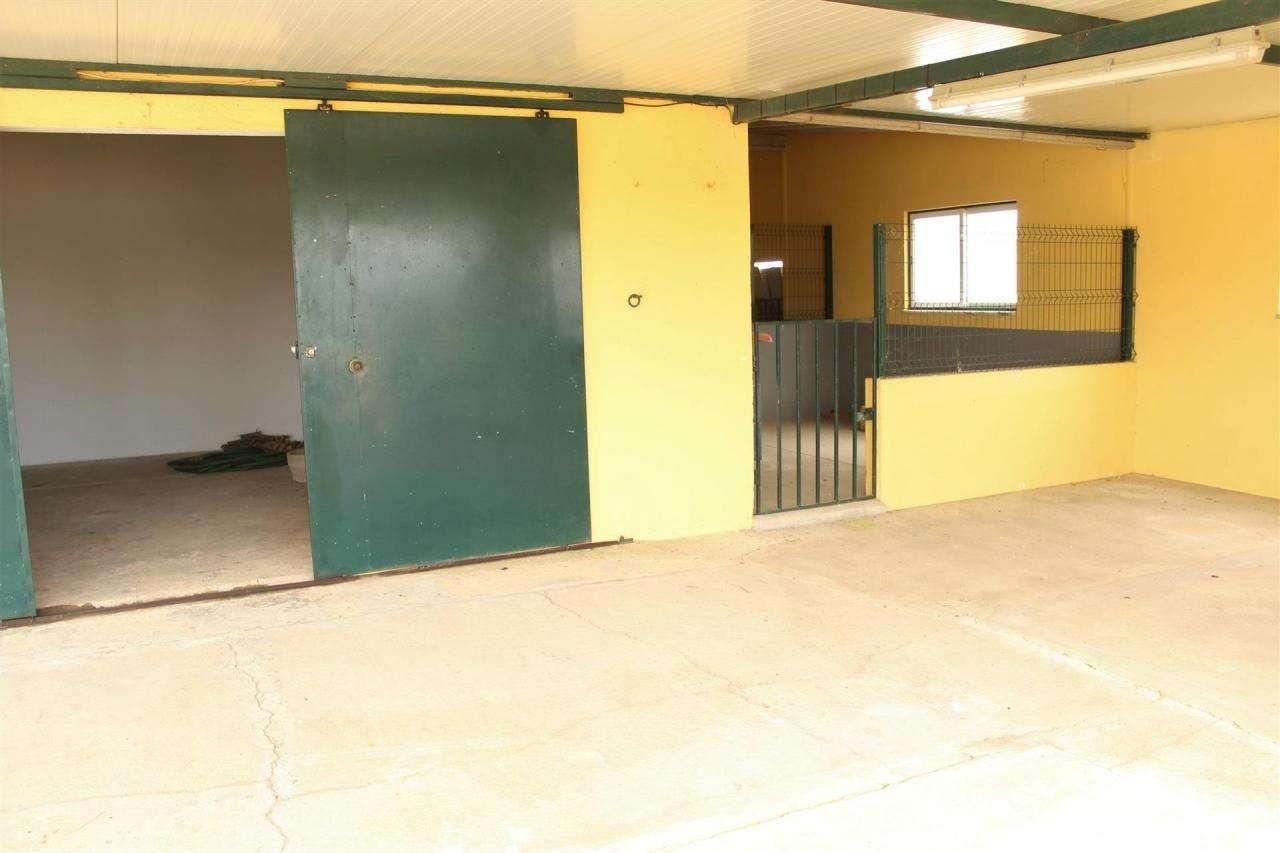 Terreno para comprar, Gâmbia-Pontes-Alto Guerra, Setúbal - Foto 16