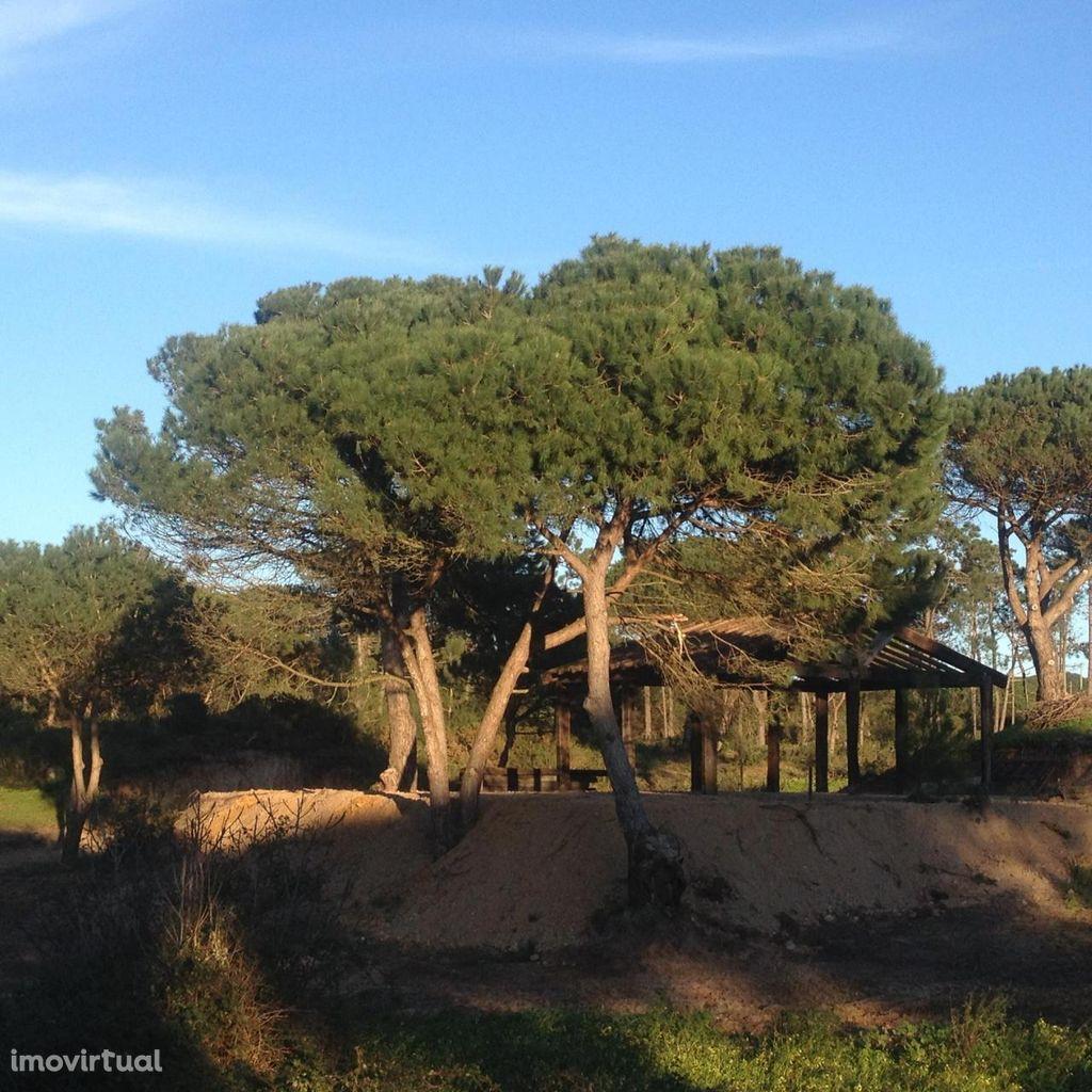Terreno para comprar, Castelo (Sesimbra), Sesimbra, Setúbal - Foto 2