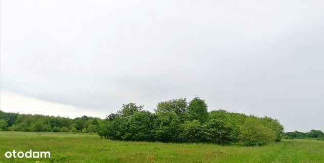 Działka dla Dewelopera , Dębica, 1,1195 ha