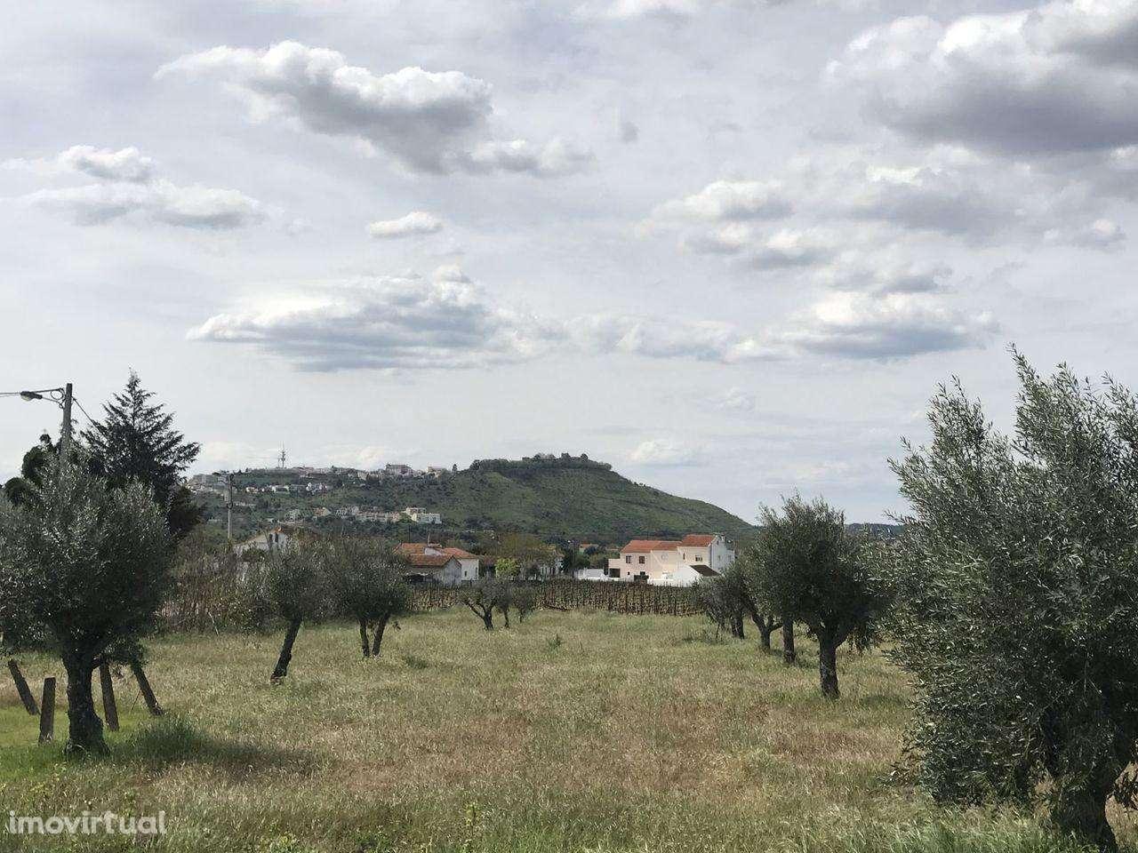 Quintas e herdades para comprar, Pego, Santarém - Foto 1