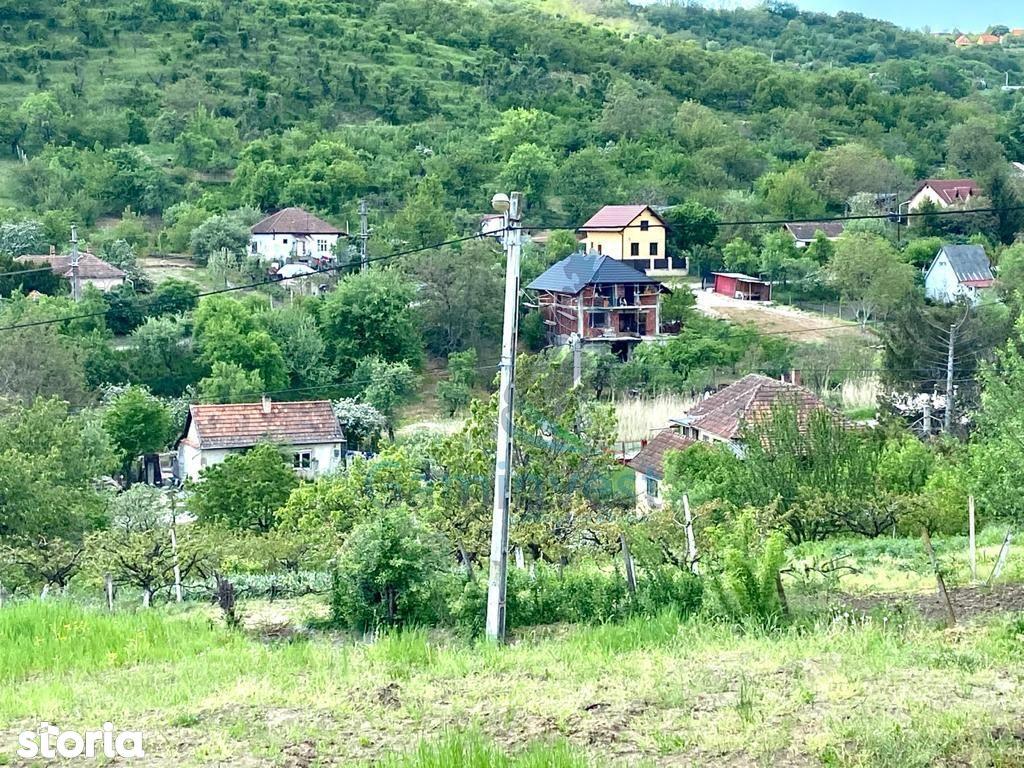 Teren de vanzare in Podgoria Oradea V2534B