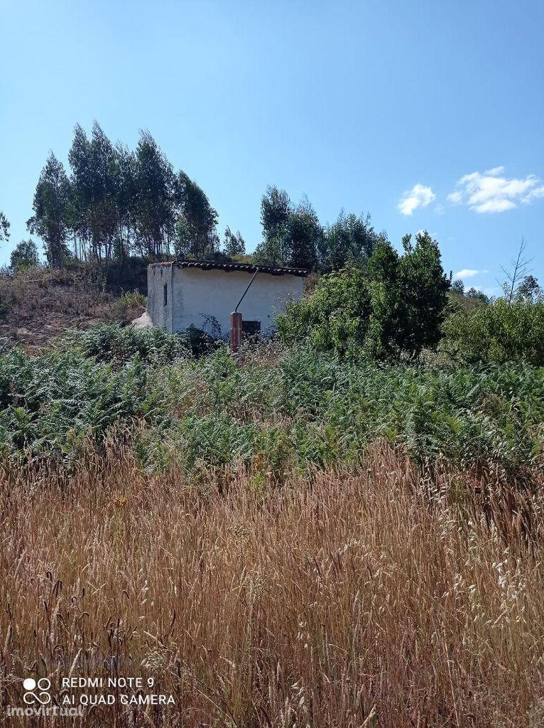 Terreno agricola com 1ha e uma construção Rural , Venda Nova Envendos