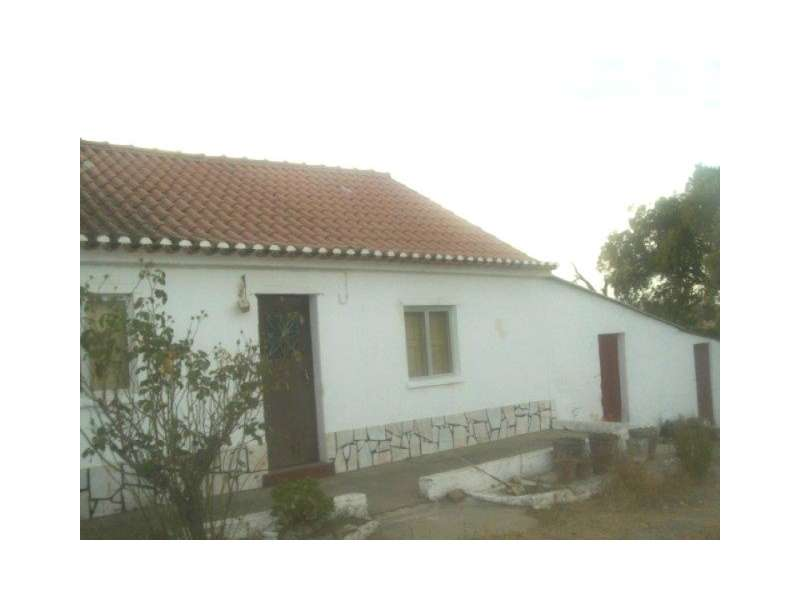 Quintas e herdades para comprar, Bemposta, Abrantes, Santarém - Foto 2