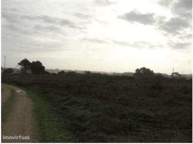 Terreno para comprar, Caldas da Rainha - Santo Onofre e Serra do Bouro, Caldas da Rainha, Leiria - Foto 4