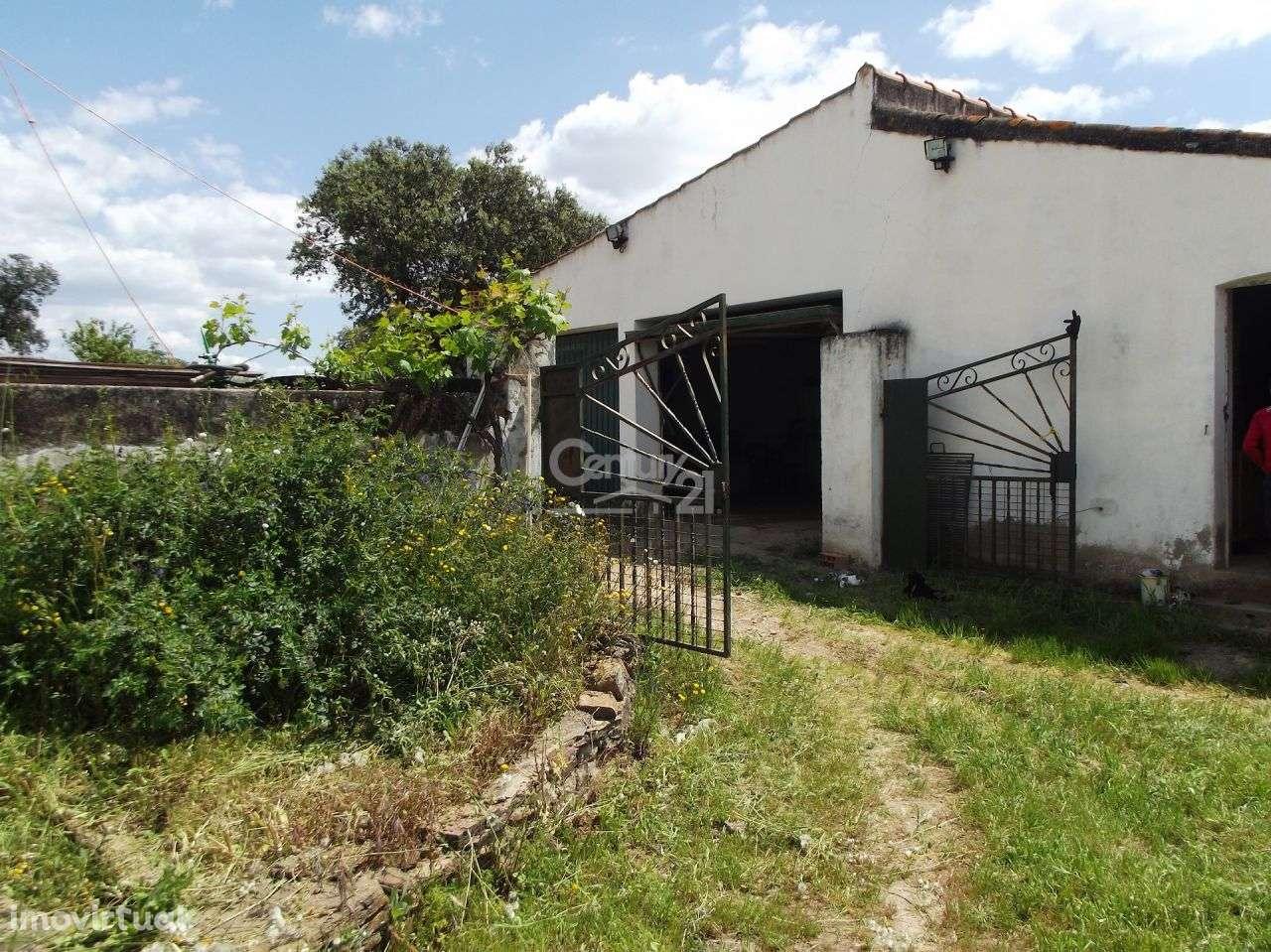 Quintas e herdades para comprar, Vila Nova de São Bento e Vale de Vargo, Serpa, Beja - Foto 18
