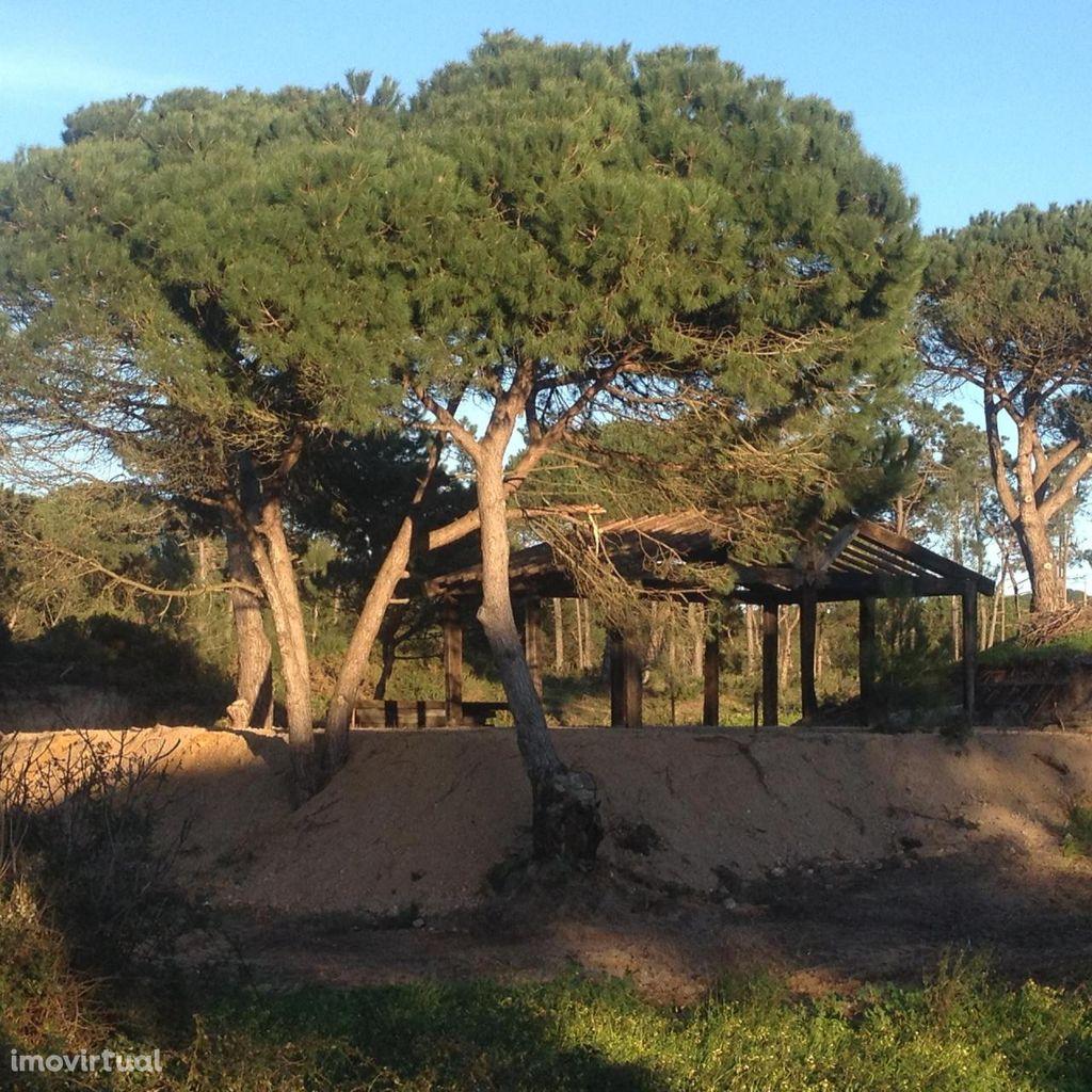 Terreno para comprar, Castelo (Sesimbra), Sesimbra, Setúbal - Foto 10