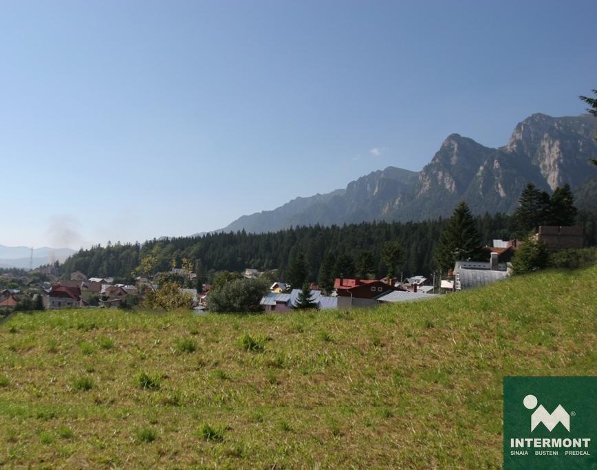 Teren Busteni- Valea Alba
