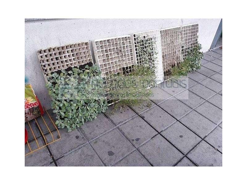 Loja para arrendar, Adaúfe, Braga - Foto 8