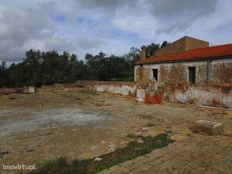 Quintas e herdades para comprar, Estômbar e Parchal, Faro - Foto 6