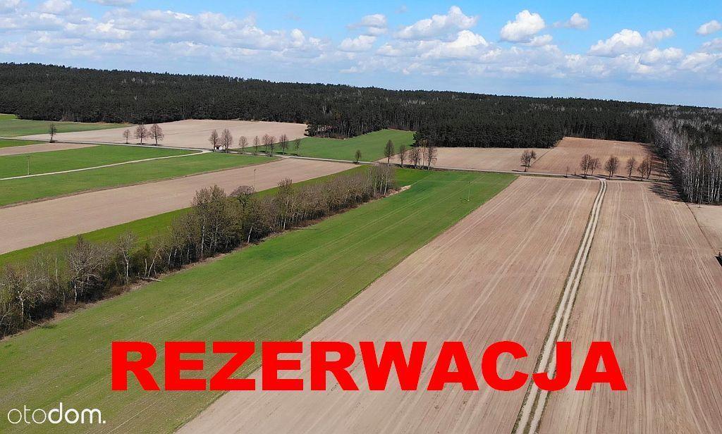 Gospodarstwo rolne (ziemia + budynki) 7,75ha!