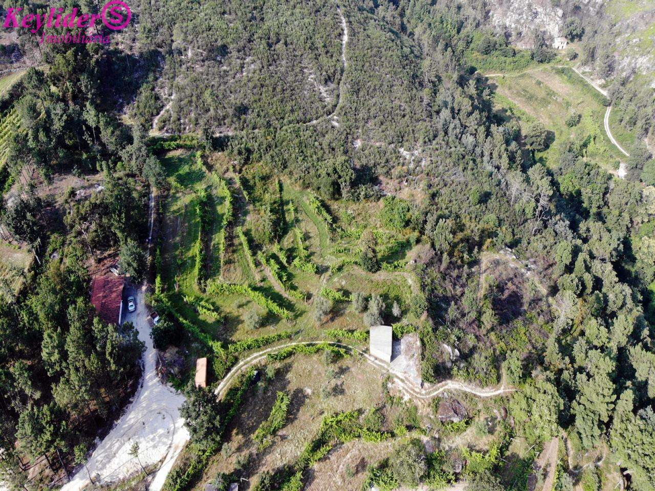 Quintas e herdades para comprar, Gondar, Porto - Foto 2