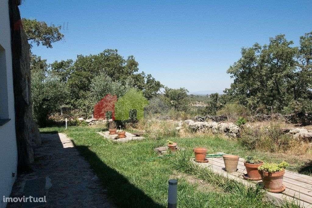 Quintas e herdades para comprar, Santa Maria da Devesa, Castelo de Vide, Portalegre - Foto 9