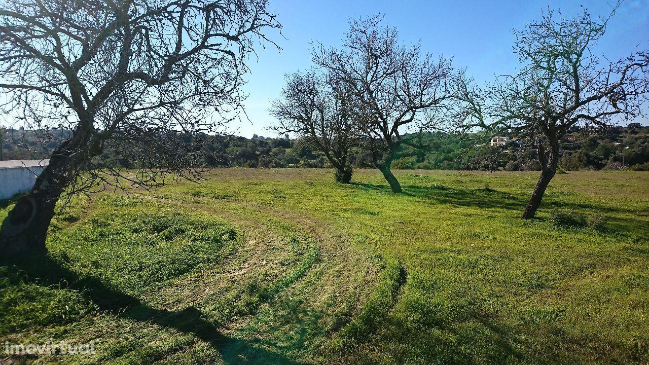 Vende-se terreno com 3980 m2 no Vale da Ursa-Amendoal, Albufeira