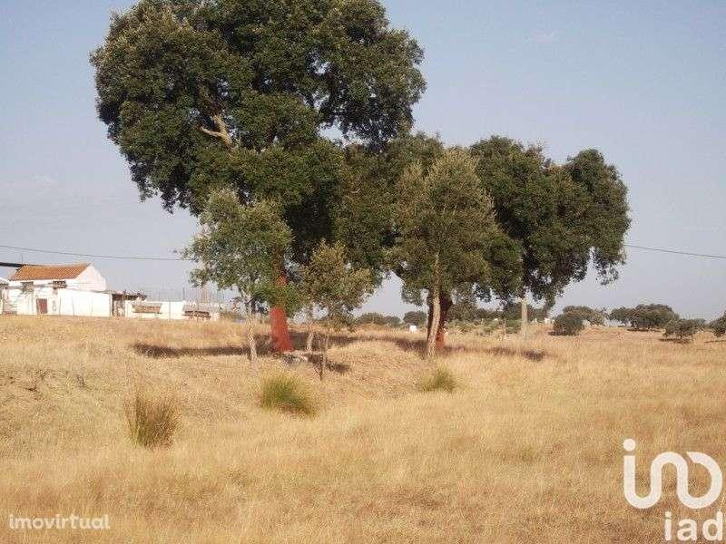 Terreno para comprar, Fronteira - Foto 17