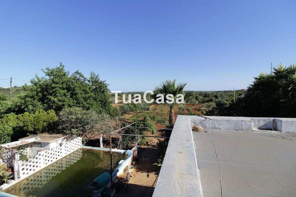 Quintas e herdades para comprar, Moncarapacho e Fuseta, Olhão, Faro - Foto 17
