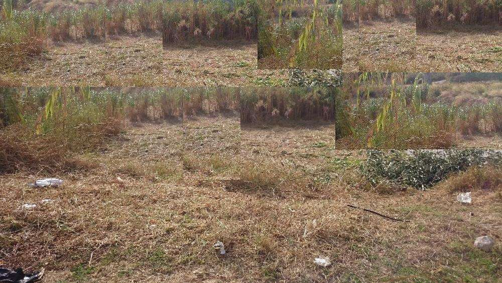 Terreno para comprar, Laranjeiro e Feijó, Almada, Setúbal - Foto 1