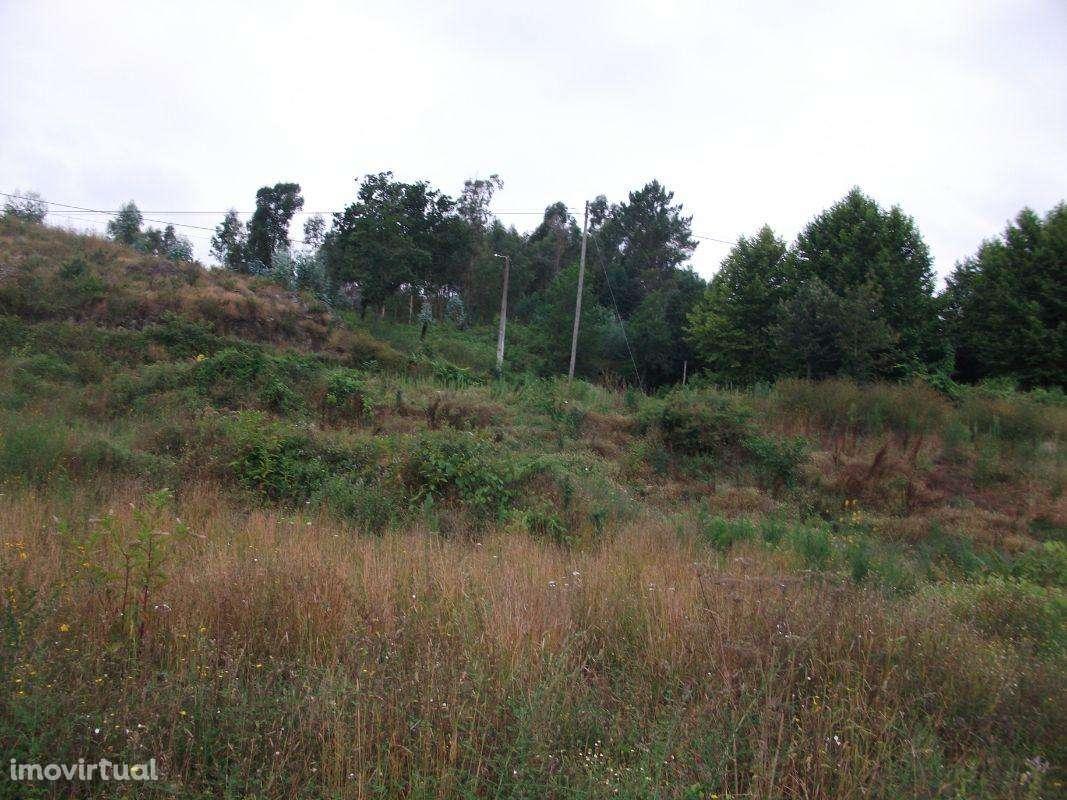 Terreno para comprar, São Torcato, Braga - Foto 1