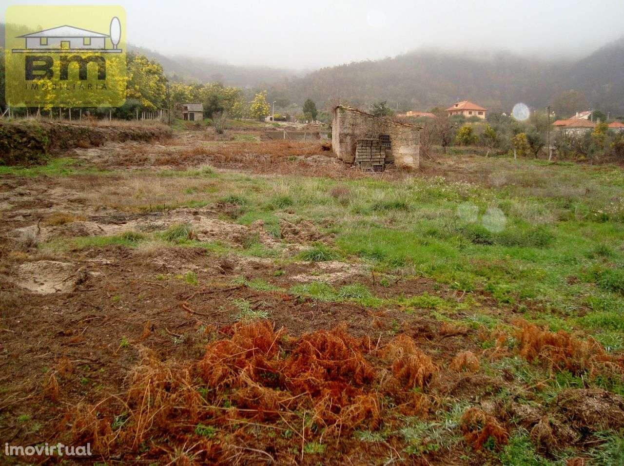 Quintas e herdades para comprar, Almaceda, Castelo Branco - Foto 15