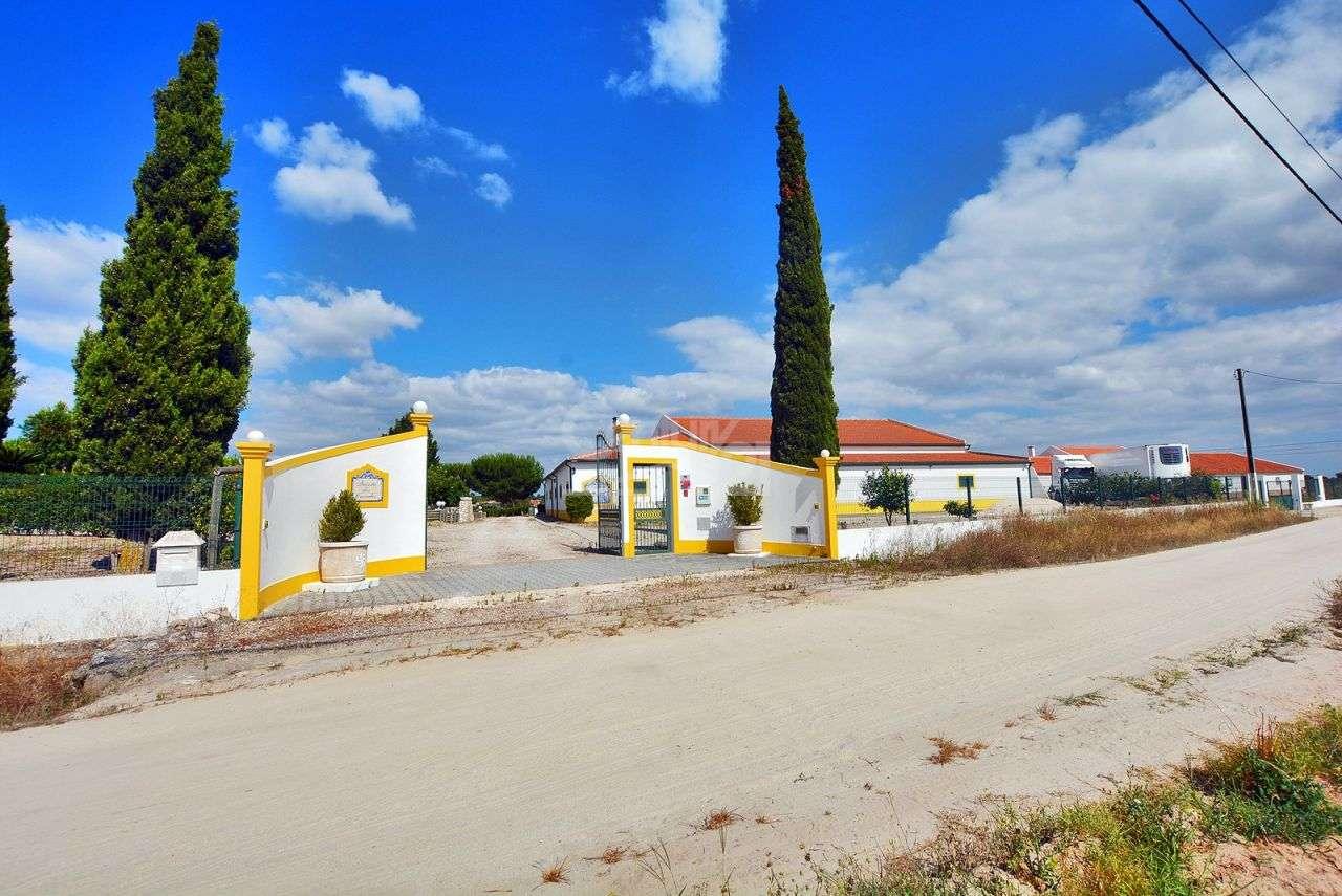 Quintas e herdades para comprar, Branca, Coruche, Santarém - Foto 53