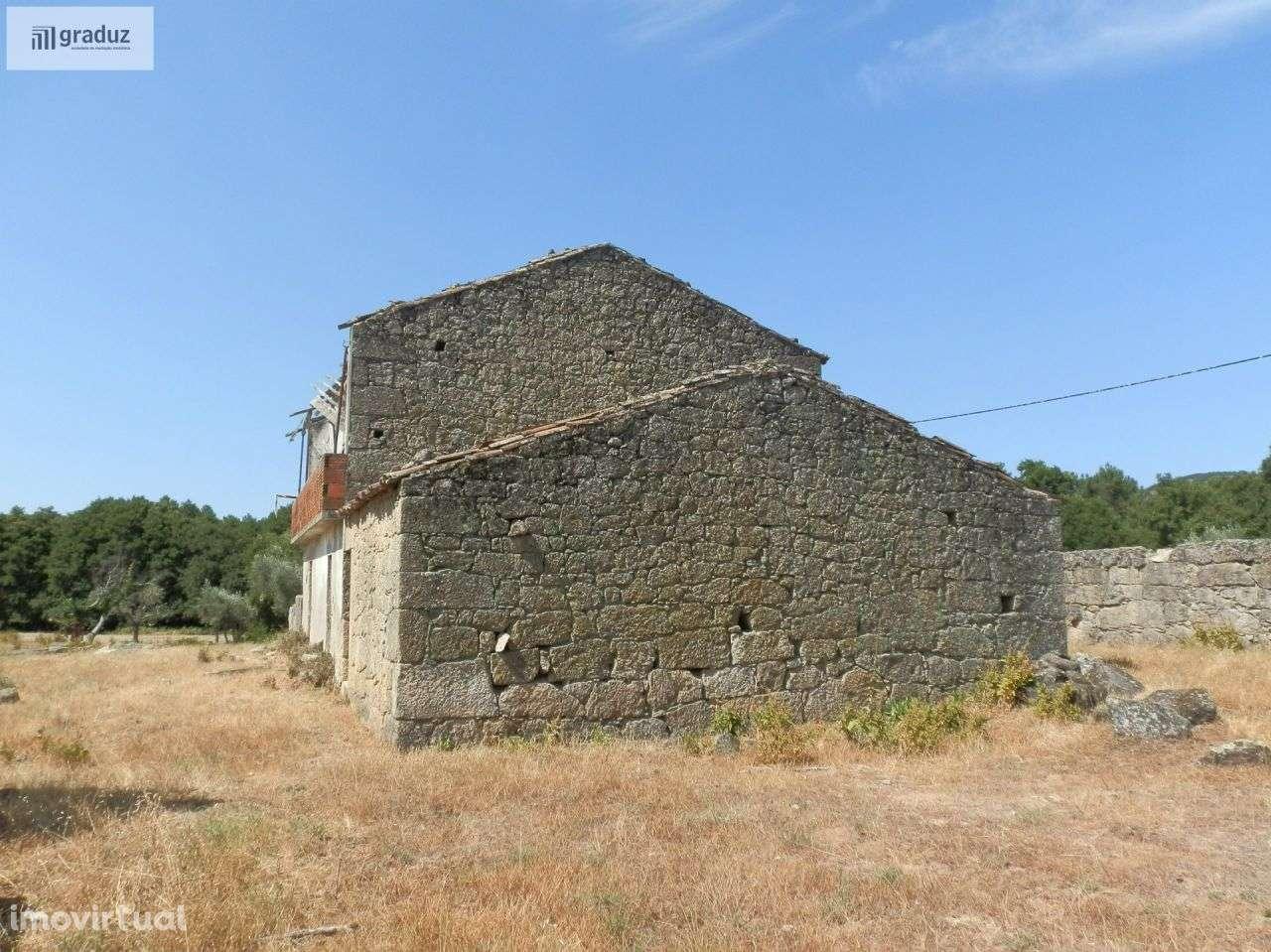 Quintas e herdades para comprar, Louriçal do Campo, Castelo Branco - Foto 12