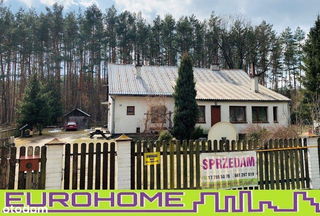 Dom jednorodzinny w pobliżu lasu-Biały Bór