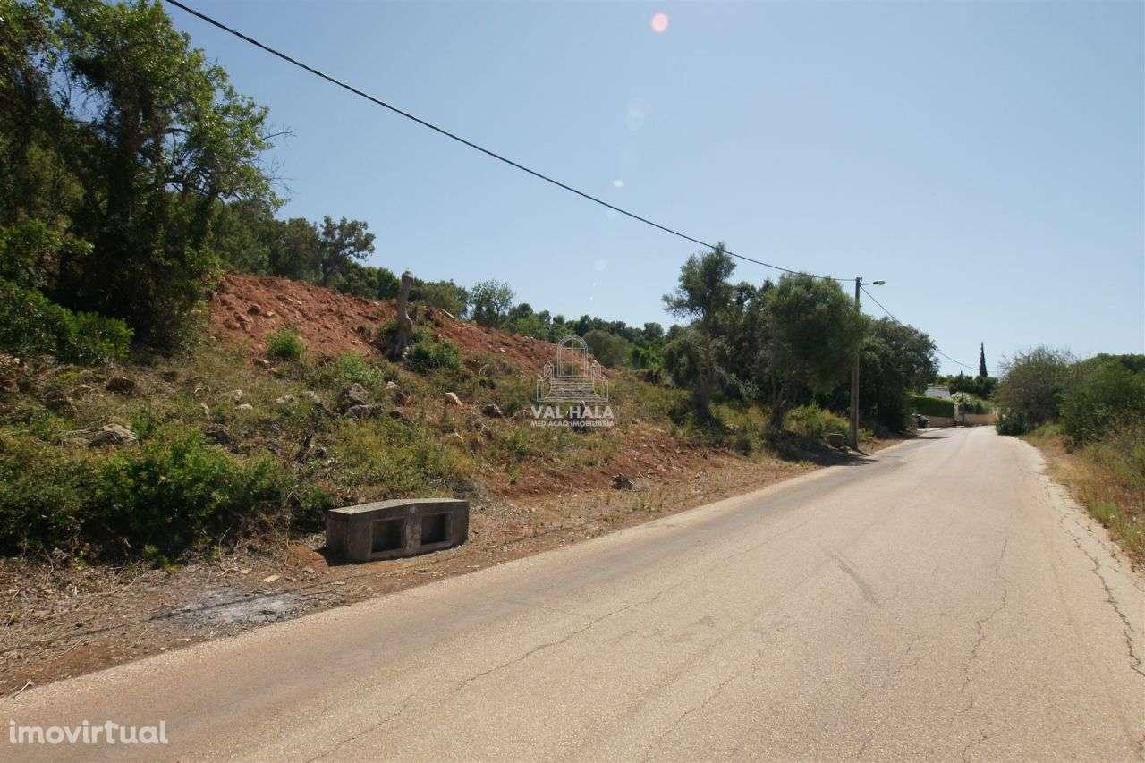 Terreno para comprar, Mexilhoeira Grande, Faro - Foto 2