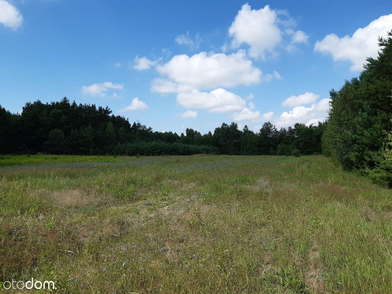działka rolno-leśna, 1,8 ha