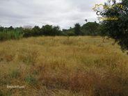 Terreno para comprar, Abrantes (São Vicente e São João) e Alferrarede, Abrantes, Santarém - Foto 3