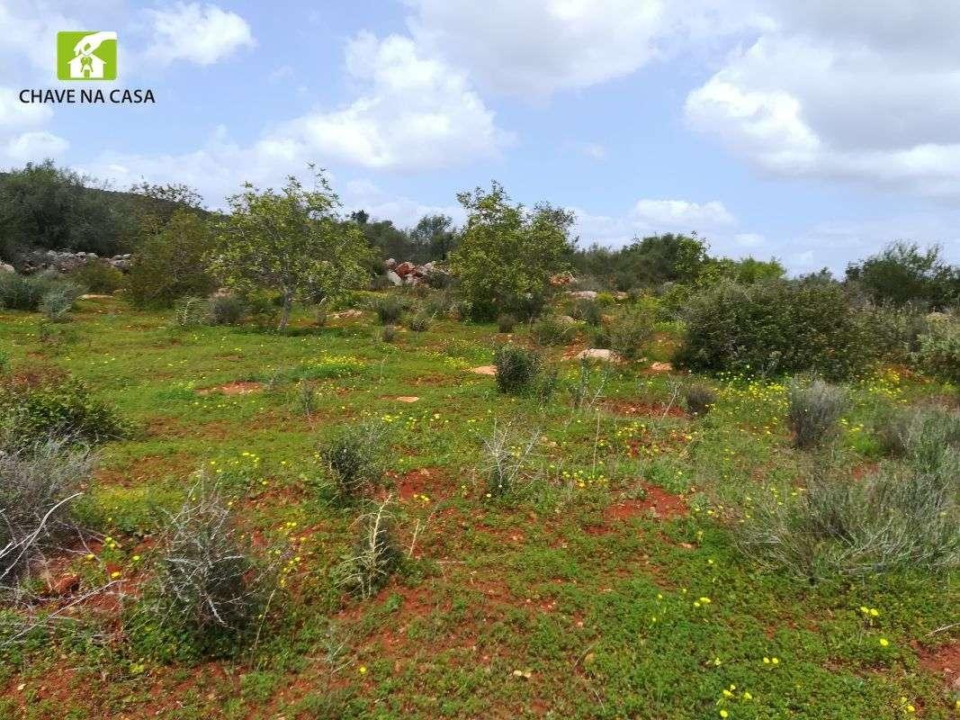 Terreno para comprar, Moncarapacho e Fuseta, Faro - Foto 22