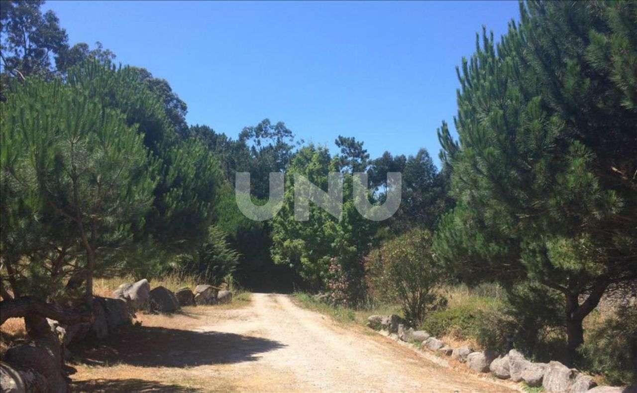 Quintas e herdades para comprar, Colares, Sintra, Lisboa - Foto 8