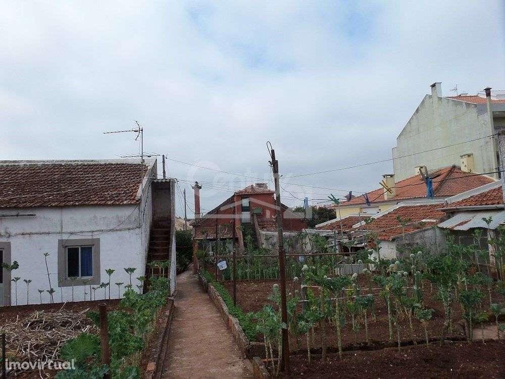 Quintas e herdades para comprar, Massamá e Monte Abraão, Lisboa - Foto 9