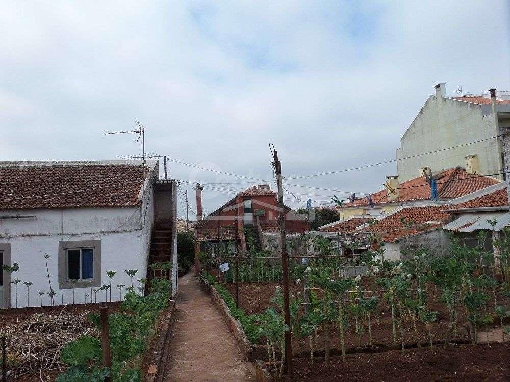 Quintas e herdades para comprar, Massamá e Monte Abraão, Sintra, Lisboa - Foto 9