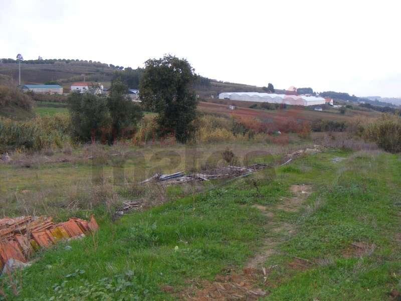Terreno para comprar, Miragaia e Marteleira, Lourinhã, Lisboa - Foto 4