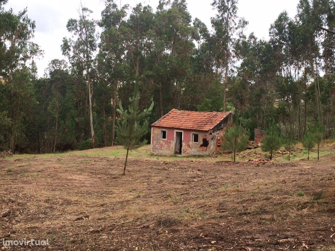 Formigal - Casal a 3 km de Caldas da Rainha