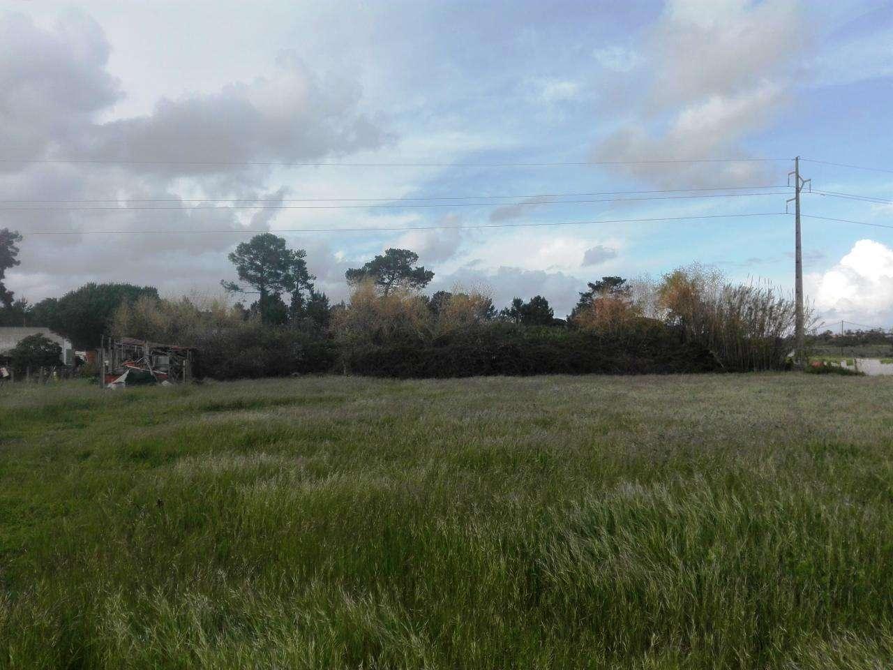 Quintas e herdades para comprar, Quinta do Anjo, Setúbal - Foto 4