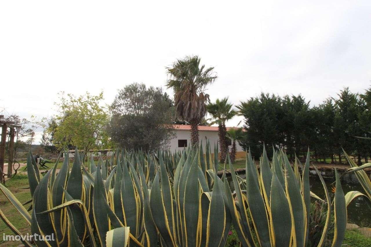 Quintas e herdades para comprar, Aljezur, Faro - Foto 16