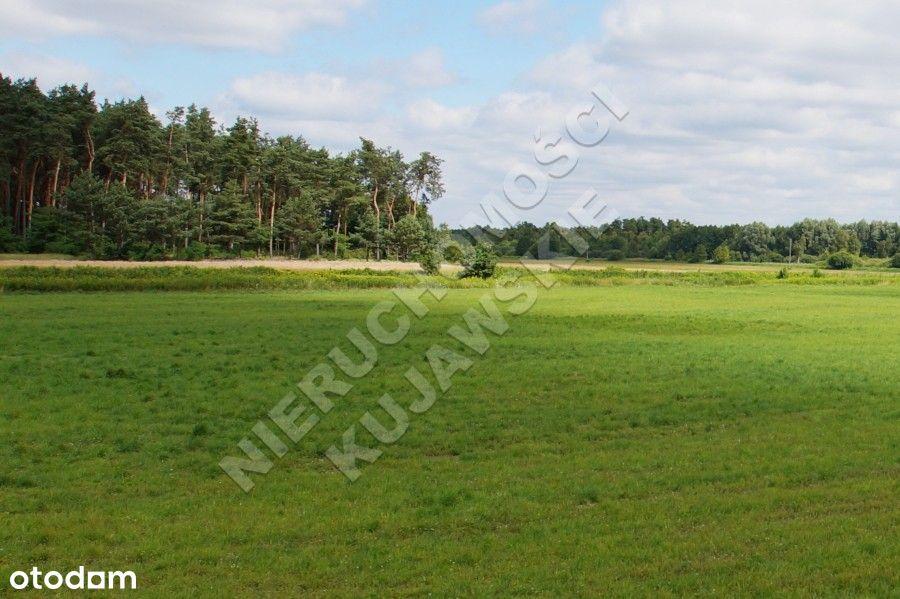 Grunty rolne 6,95ha, Winduga, Gm.Bobrowniki
